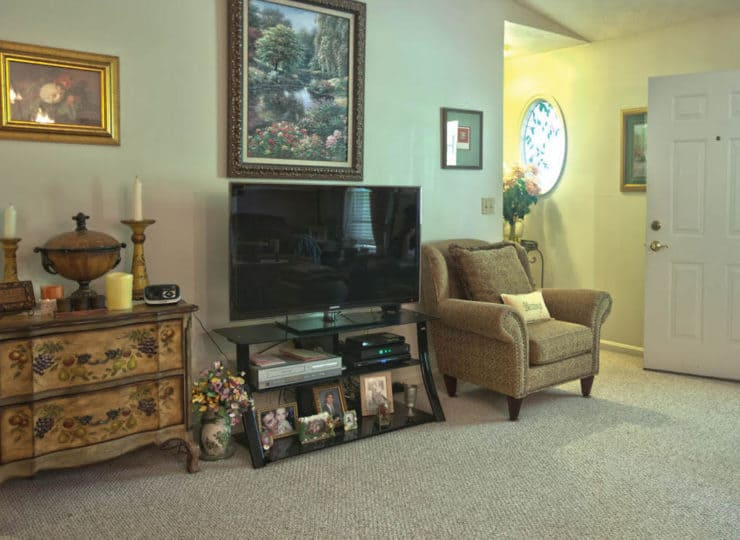 Timber Woods Living Room with television