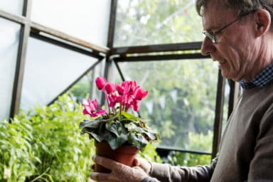 Man successfully gardening with arthritis