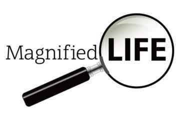 Magnified Life Logo