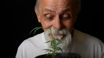 The Times They Are A-Changin': Marijuana Use Among Older Adults thumbnail