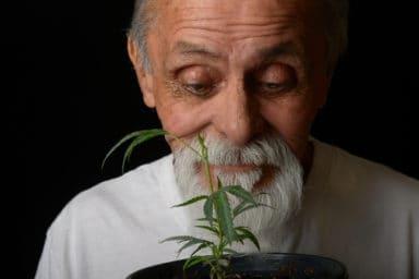Marijuana use among older adults is growing