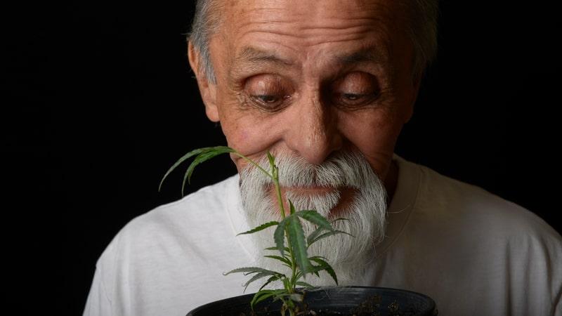 Marijuana use among older adults is growing