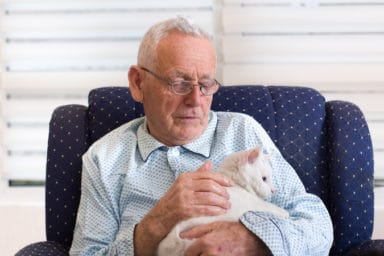 Senior man with robotic pets