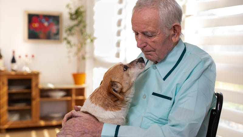 Pets allowed in retirement homes are so beneficial