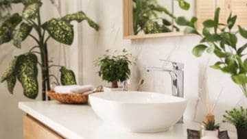 The Best Plants for Your Bathroom thumbnail